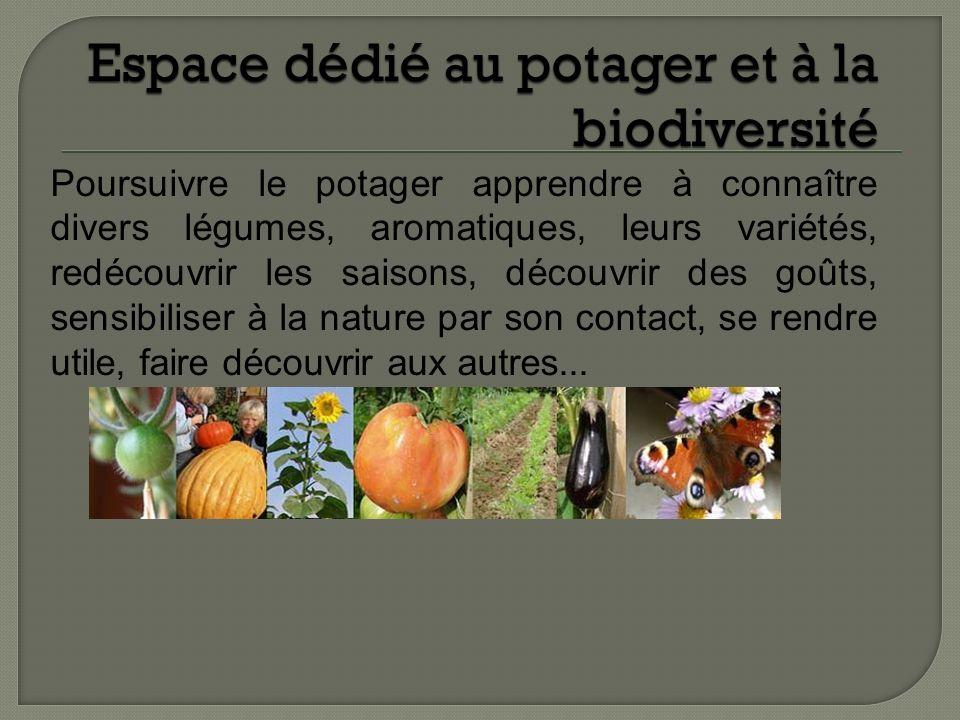 Espace dédié au potager et à la biodiversité Poursuivre le potager apprendre à connaître divers légumes, aromatiques, leurs variétés, redécouvrir les