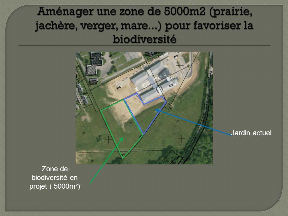 Zone de biodiversité en projet ( 5000m²) Jardin actuel