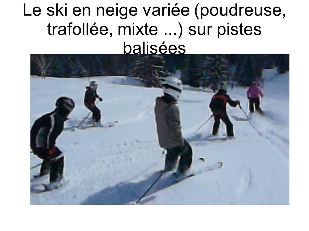 Le ski en neige variée (poudreuse, trafollée, mixte...) sur pistes balisées