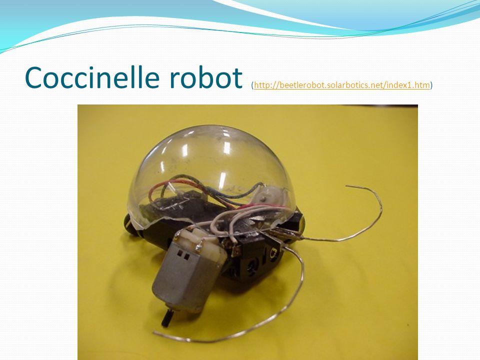 Coccinelle robot (http://beetlerobot.solarbotics.net/index1.htm)http://beetlerobot.solarbotics.net/index1.htm