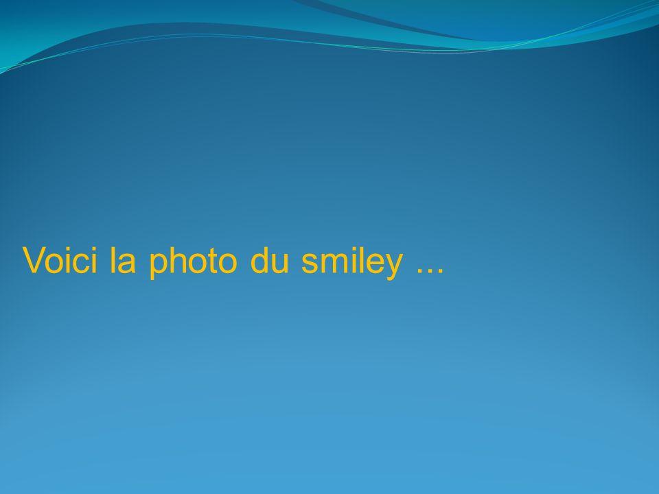 Le plus grand smiley du monde humain.