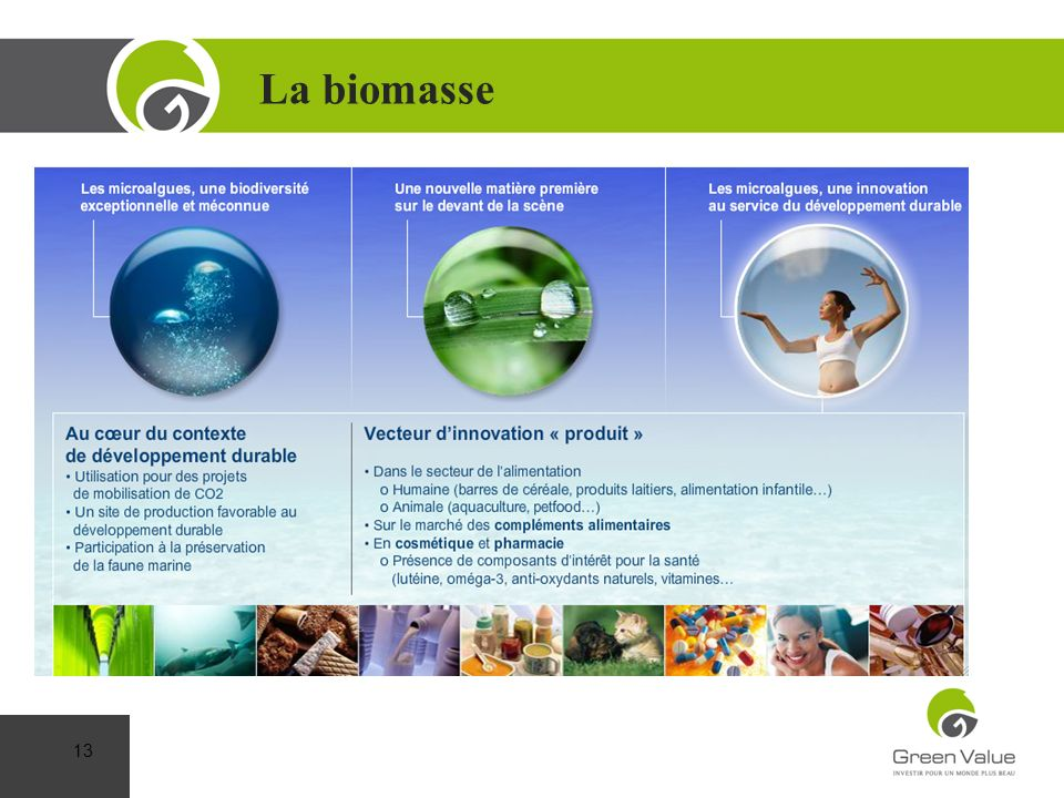 La biomasse Cap sur la Performance 13