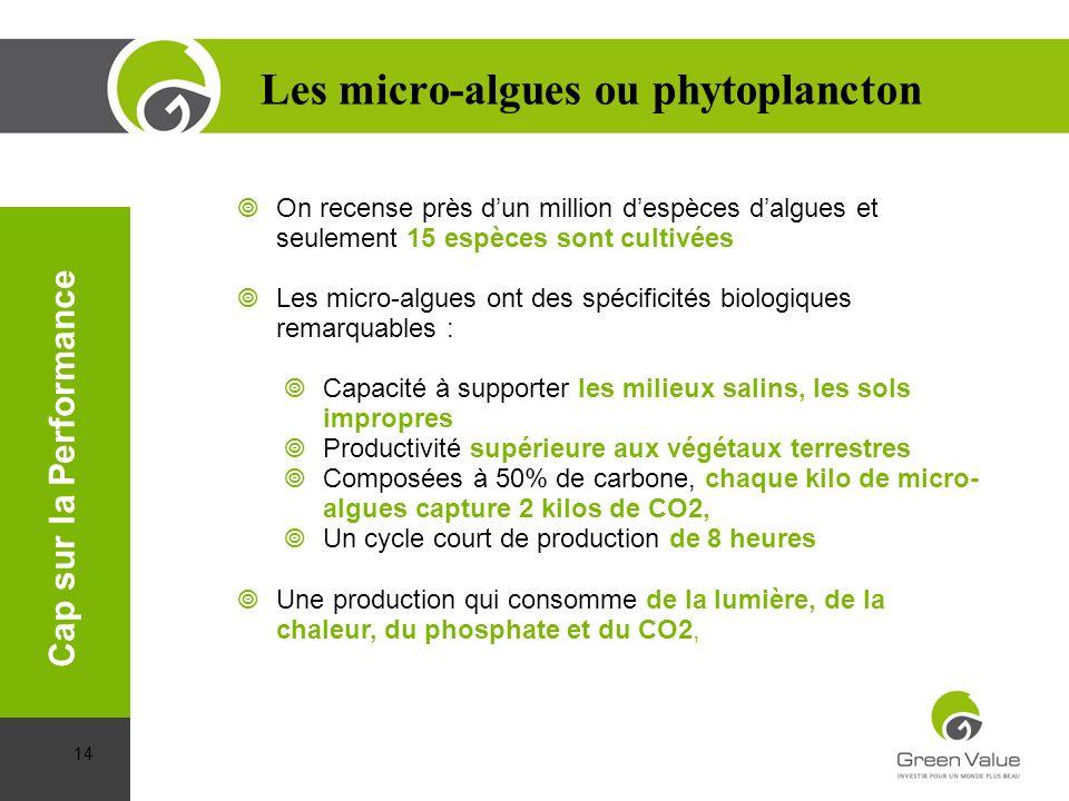 On recense près dun million despèces dalgues et seulement 15 espèces sont cultivées. Les micro-algues ont des spécificités biologiques remarquables :