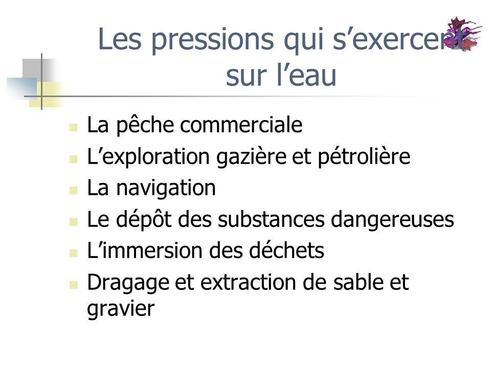 Les pressions qui sexercent sur leau La pêche commerciale Lexploration gazière et pétrolière La navigation Le dépôt des substances dangereuses Limmers