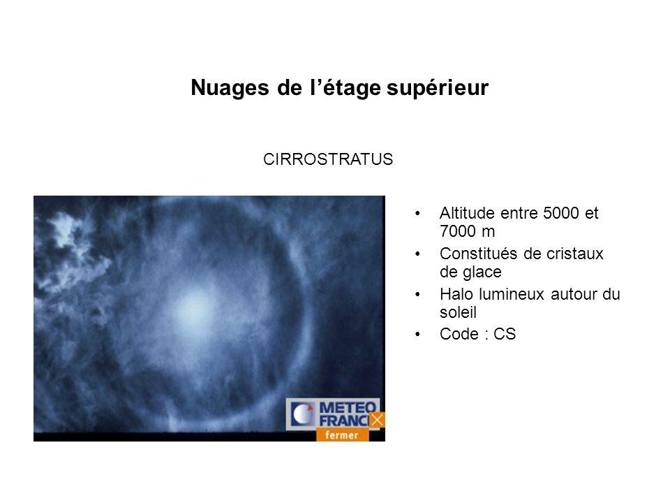 Nuages de létage supérieur Altitude entre 5000 et 7000 m Constitués de cristaux de glace Halo lumineux autour du soleil Code : CS CIRROSTRATUS