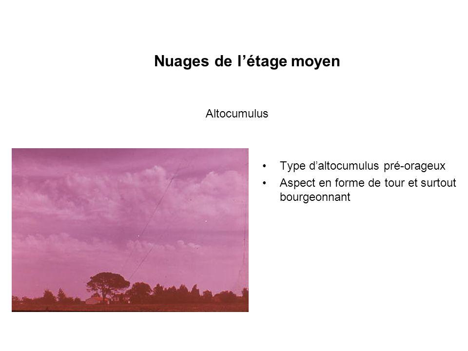 Nuages de létage moyen Type daltocumulus pré-orageux Aspect en forme de tour et surtout bourgeonnant Altocumulus