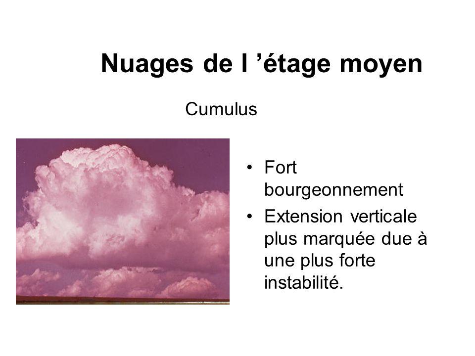 Nuages de l étage moyen Fort bourgeonnement Extension verticale plus marquée due à une plus forte instabilité. Cumulus