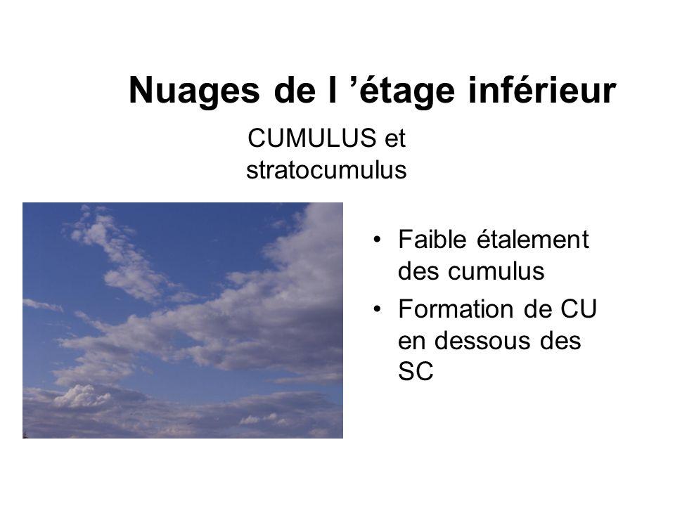 Nuages de l étage inférieur Faible étalement des cumulus Formation de CU en dessous des SC CUMULUS et stratocumulus