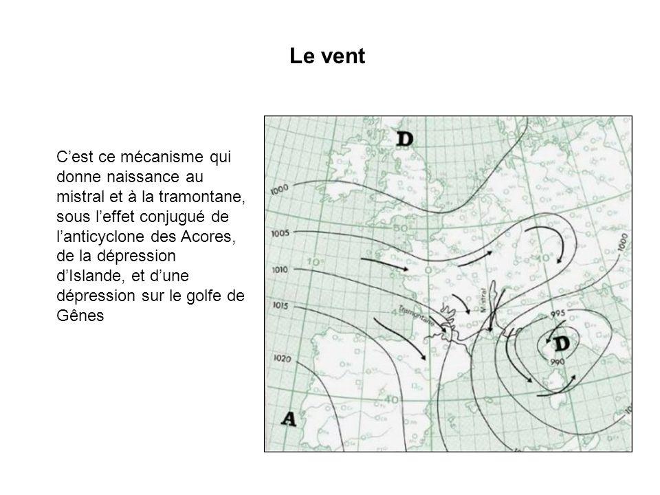 Nuages de létage moyen Altitude entre 2500 et 5000 m Aspect en forme de galets ou rouleaux.