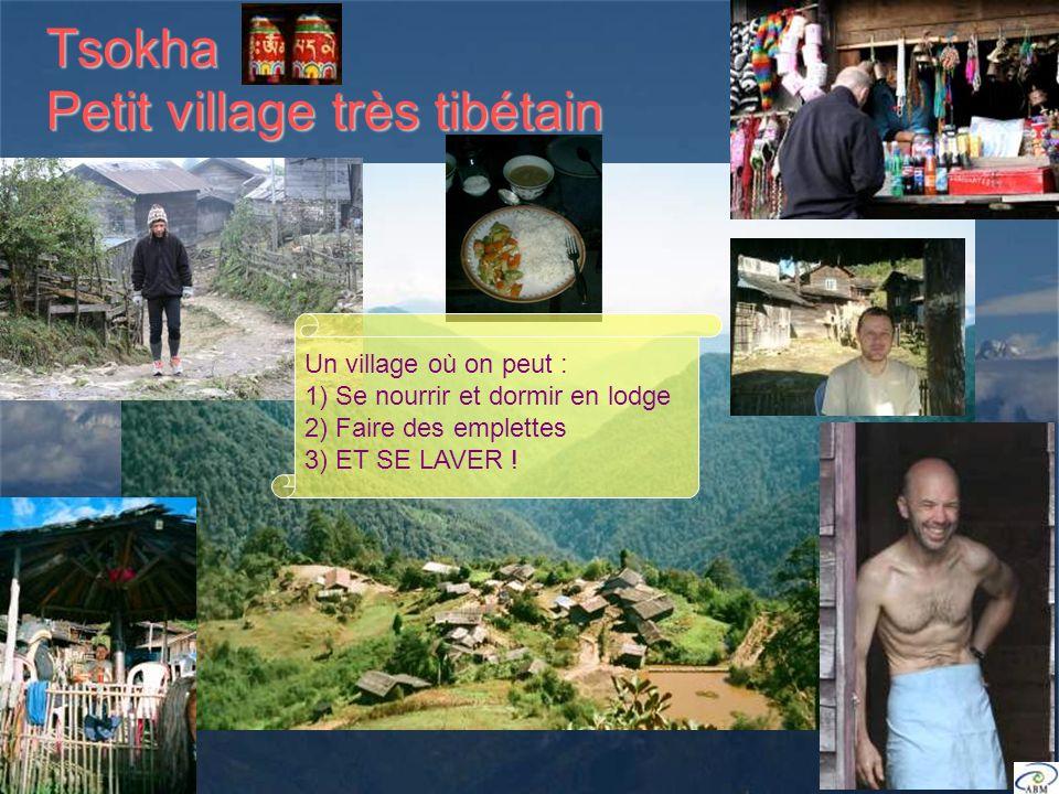 Tsokha Petit village très tibétain Un village où on peut : 1) Se nourrir et dormir en lodge 2) Faire des emplettes 3) ET SE LAVER !