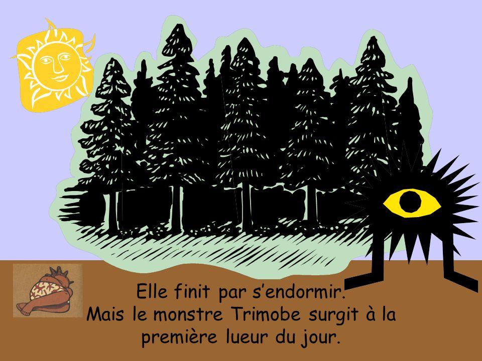 Bientôt la nuit descendit sur la forêt. Les fourrés semplirent de bruits étranges. Tout devint obscur. La fillette tremblait de peur.