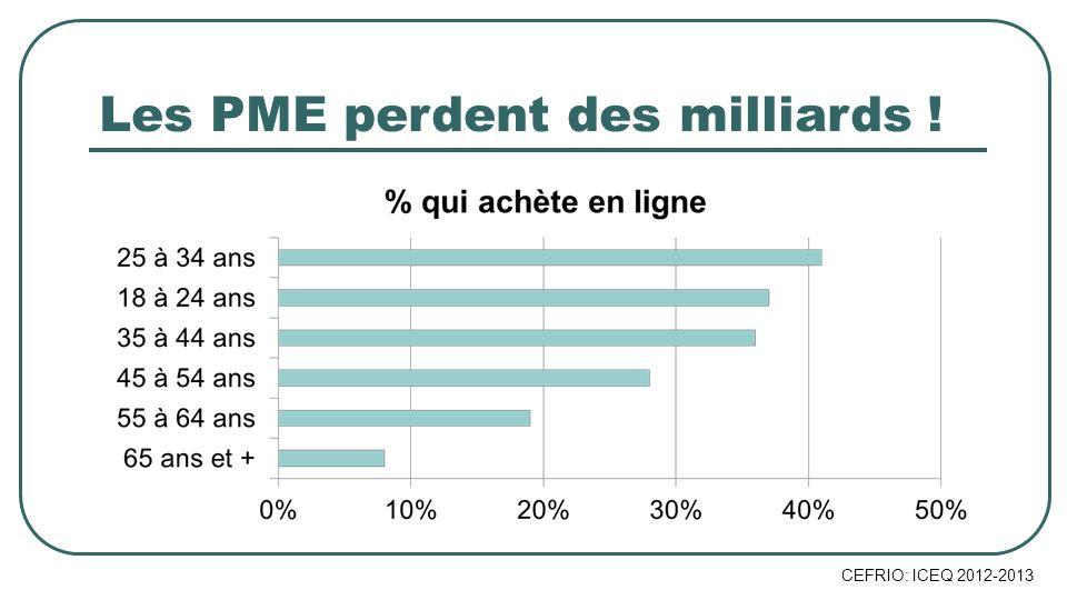 CEFRIO: ICEQ 2012-2013 Les PME perdent des milliards !