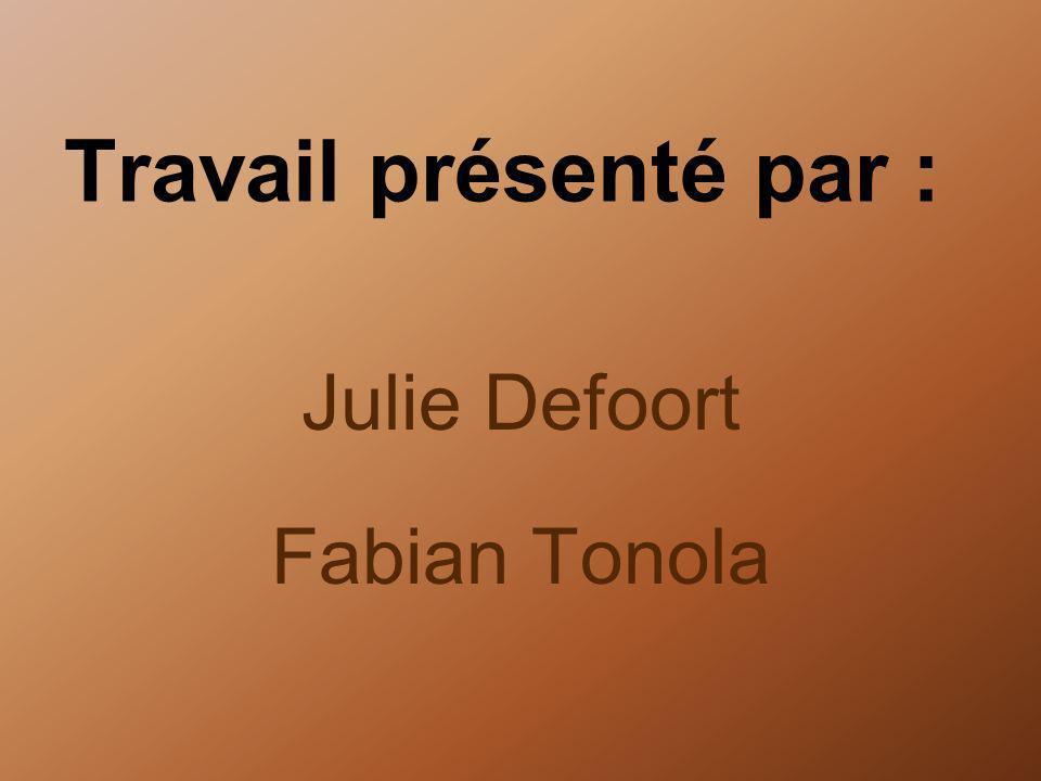 Travail présenté par : Julie Defoort Fabian Tonola
