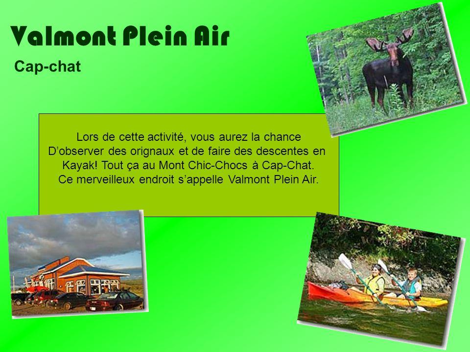 Valmont Plein Air Cap-chat Lors de cette activité, vous aurez la chance Dobserver des orignaux et de faire des descentes en Kayak! Tout ça au Mont Chi