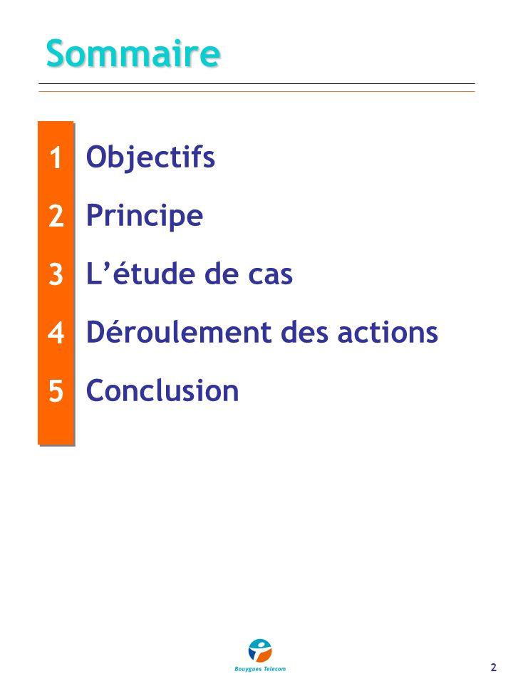 2 Sommaire 1234512345 1234512345 Objectifs Principe Létude de cas Déroulement des actions Conclusion