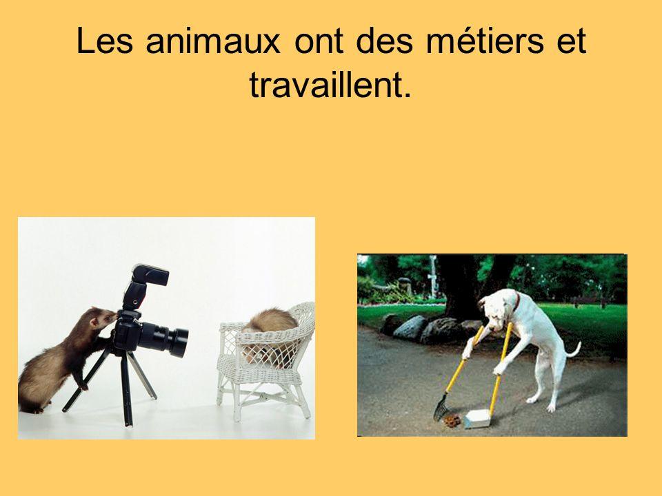 Les animaux ont des métiers et travaillent.