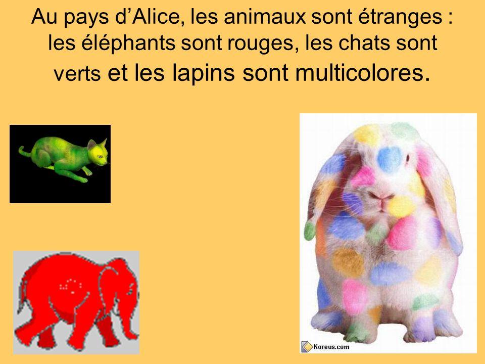 Au pays dAlice, les animaux sont étranges : les éléphants sont rouges, les chats sont verts et les lapins sont multicolores.