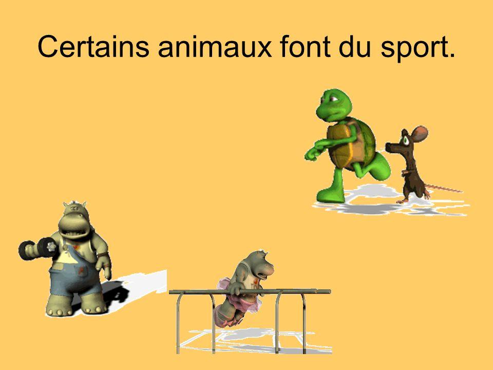 Certains animaux font du sport.