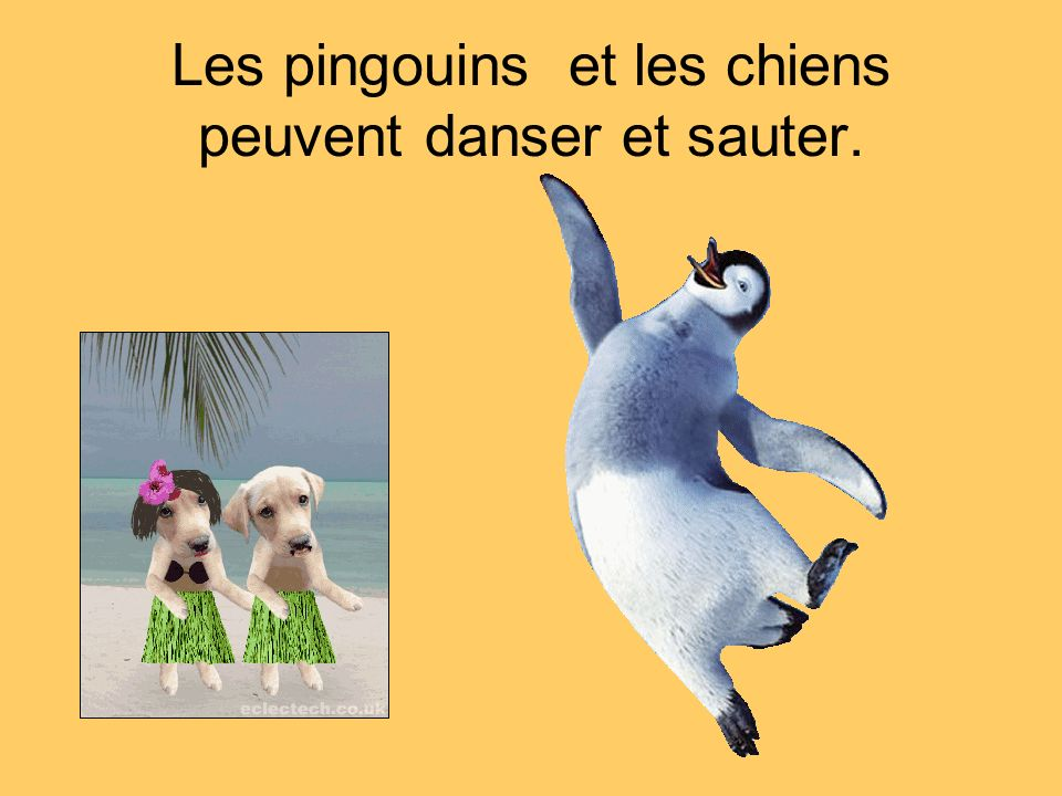 Les pingouins et les chiens peuvent danser et sauter.