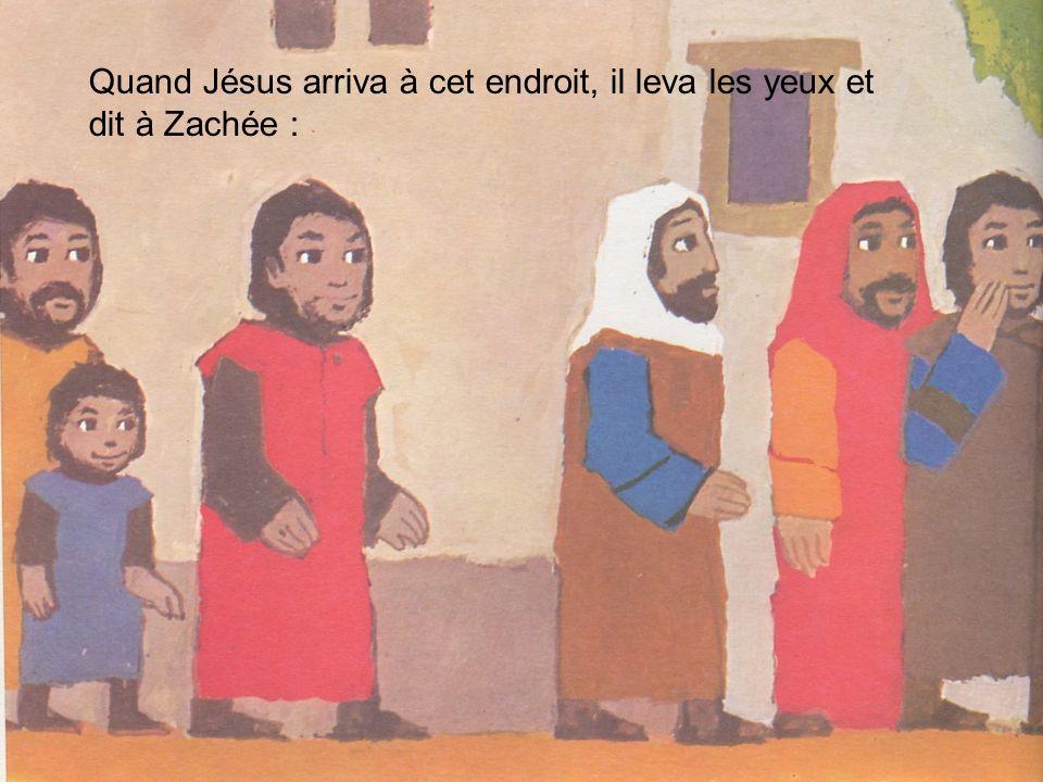 Quand Jésus arriva à cet endroit, il leva les yeux et dit à Zachée :