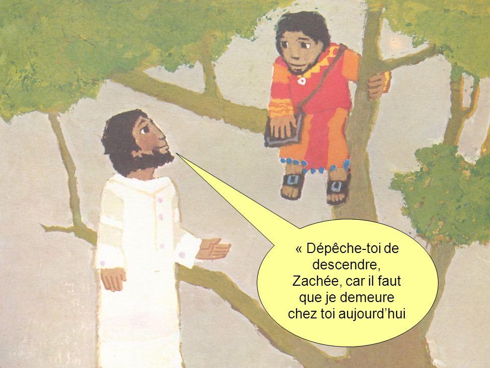 « Dépêche-toi de descendre, Zachée, car il faut que je demeure chez toi aujourdhui