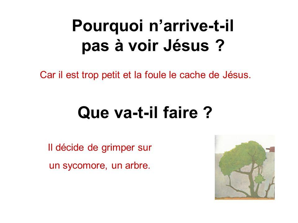 Pourquoi narrive-t-il pas à voir Jésus .Car il est trop petit et la foule le cache de Jésus.