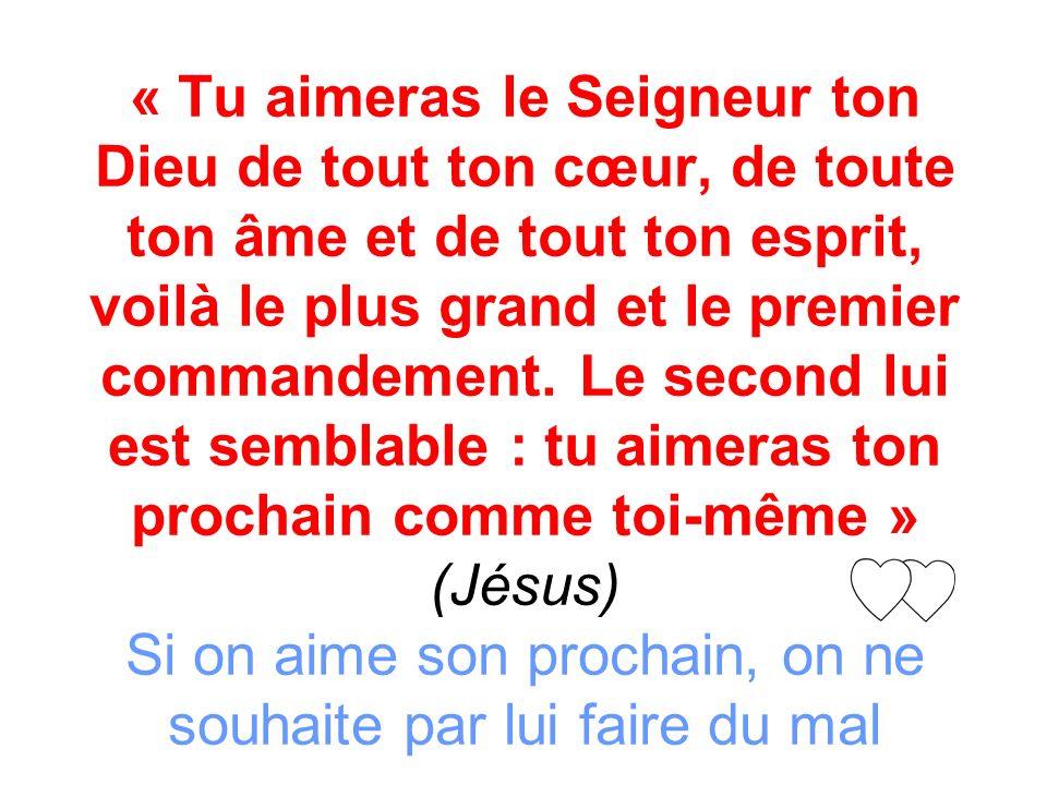 « Tu aimeras le Seigneur ton Dieu de tout ton cœur, de toute ton âme et de tout ton esprit, voilà le plus grand et le premier commandement.