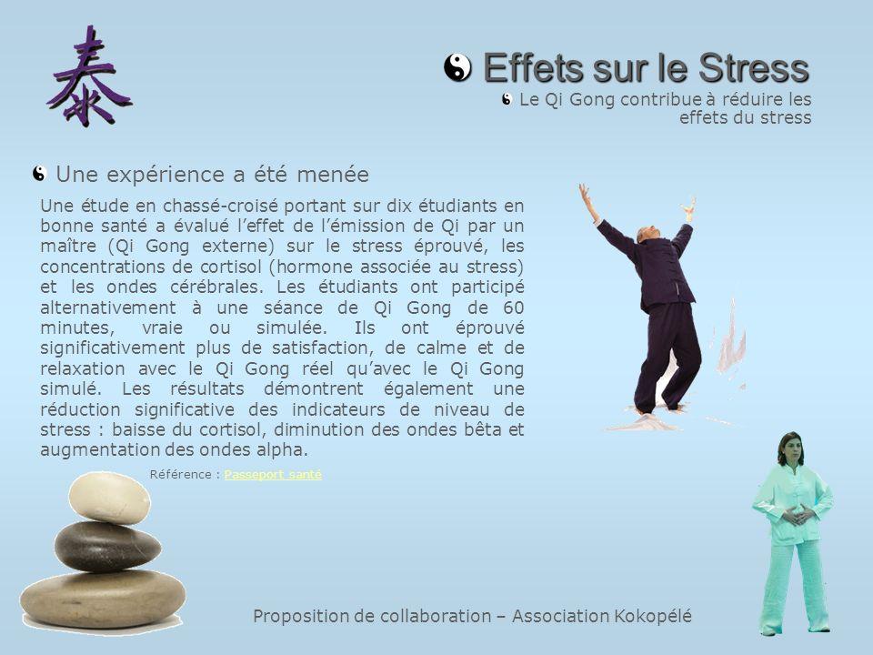 Proposition de collaboration – Association Kokopélé Effets sur le Stress Effets sur le Stress Le Qi Gong contribue à réduire les effets du stress Une