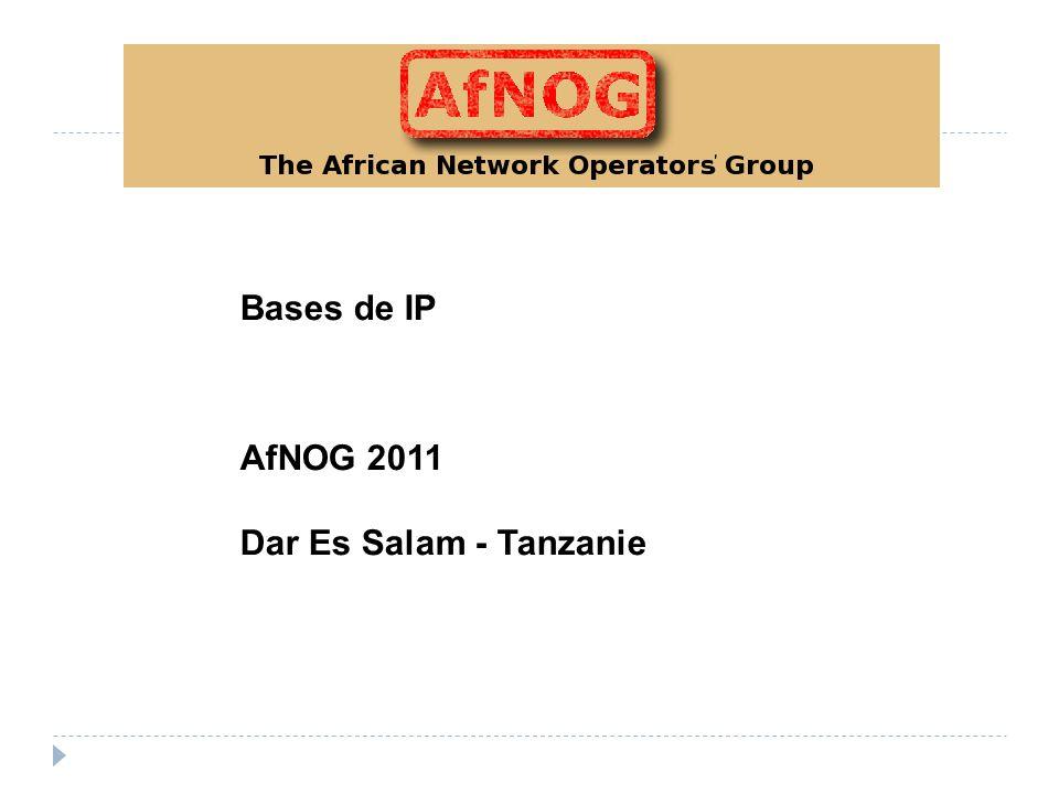 Bases de IP AfNOG 2011 Dar Es Salam - Tanzanie