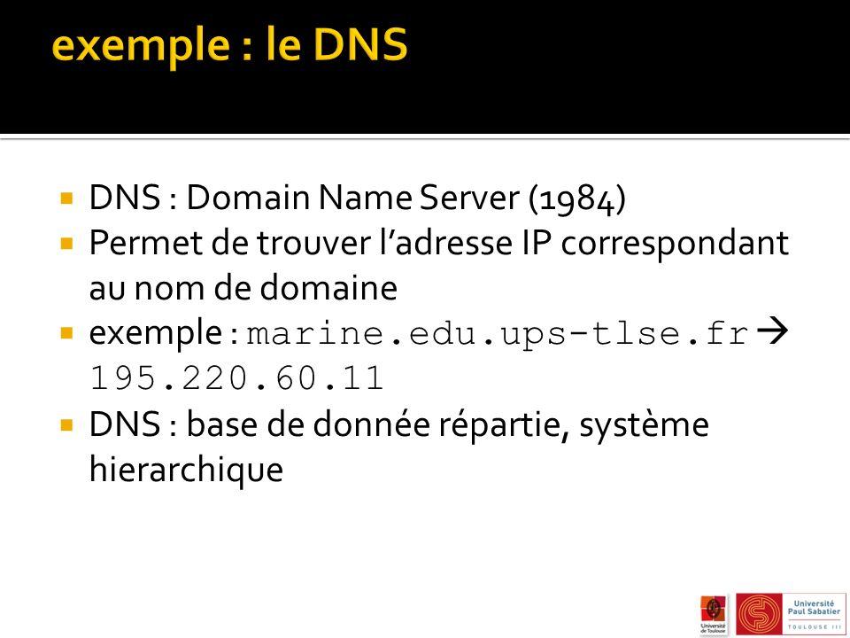 DNS : Domain Name Server (1984) Permet de trouver ladresse IP correspondant au nom de domaine exemple : marine.edu.ups-tlse.fr 195.220.60.11 DNS : base de donnée répartie, système hierarchique
