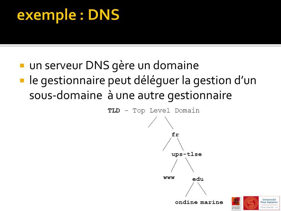 un serveur DNS gère un domaine le gestionnaire peut déléguer la gestion dun sous-domaine à une autre gestionnaire fr ups-tlse edu www marine ondine TLD – Top Level Domain