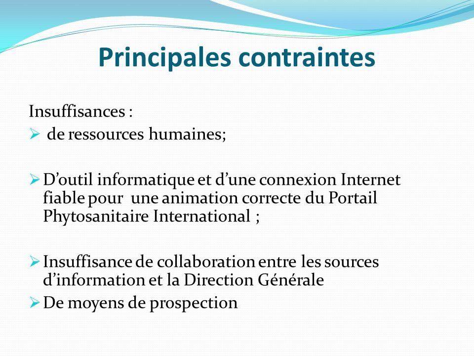 Principales contraintes Insuffisances : de ressources humaines; Doutil informatique et dune connexion Internet fiable pour une animation correcte du P