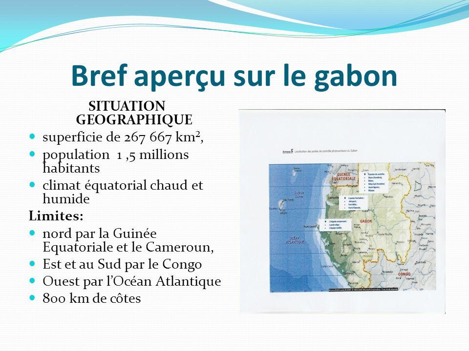 Bref aperçu sur le gabon SITUATION GEOGRAPHIQUE superficie de 267 667 km², population 1,5 millions habitants climat équatorial chaud et humide Limites: nord par la Guinée Equatoriale et le Cameroun, Est et au Sud par le Congo Ouest par lOcéan Atlantique 800 km de côtes
