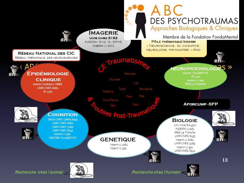 1 Réseau thématique national de recherche « ABC Biologie et Approches Cliniques des Psychotraumas » GENETIQUE Inserm U 1061 Inserm U 930 Biologie Univ Nice EA4321 INSERM U1061 IRBA La Tronche UMR CNRS 6193 Inserm U 8061 UMR CNRS 5169 Inserm U 930 UMR CNRS 8591 Réseau National des CIC Réseau thématique des neurosciences Epidémiologie clinique Inserm U1061(ex U888) UMR CNRS 8061 JE 2511 Cognition INSB-CNRS UMR5 6193 UMR CNRS 8061 UMR CNRS 5169 UMR CNRS 8591 Inserm U 930 INSERM E0218/EPHE Pôle thématique Inserm « Neuroscience, sc cognitive, neurologie, psychiatrie » itmo Pôle thématique Inserm « Neuroscience, sc cognitive, neurologie, psychiatrie » itmo Nice Paris Orsay Marseille Tours Lille Montpellier Caen Grenoble Toulouse NEUROPSYCHOLOGIE Inserm E0218/EPHE JE 2511 Inserm U 930 IRBA La Tronche Recherche chez lanimal Recherche chez lhumain 13 Imagerie Umr cnrs 6193 INSERM E0218/EPHE Inserm U 930 Imagerie Umr cnrs 6193 INSERM E0218/EPHE Inserm U 930 Aforcump -SFP Fort e France