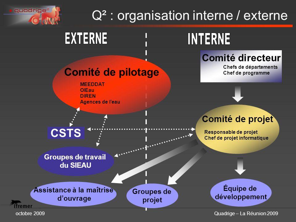 octobre 2009Quadrige – La Réunion 2009 Q² : organisation interne / externe Comité de pilotage Groupes de projet MEEDDAT OIEau DIREN Agences de leau Co