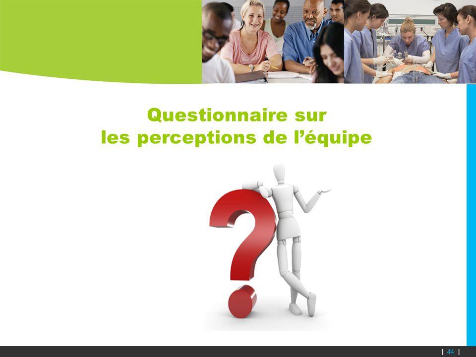 Questionnaire sur les perceptions de léquipe | 44 |
