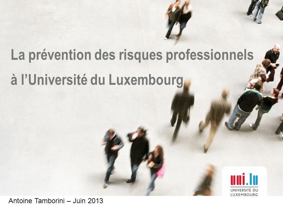 La prévention des risques professionnels à lUniversité du Luxembourg Antoine Tamborini – Juin 2013