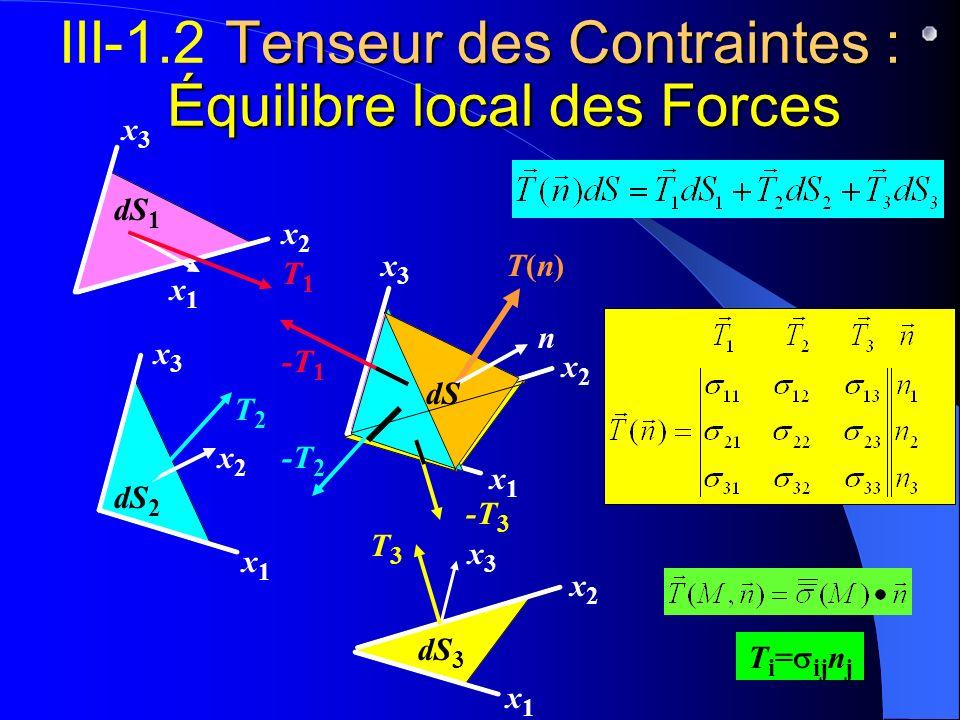 x3x3 x2x2 x1x1 x3x3 x2x2 Tenseur des Contraintes : Équilibre local des Forces III-1.2 Tenseur des Contraintes : Équilibre local des Forces dS 1 x1x1 T