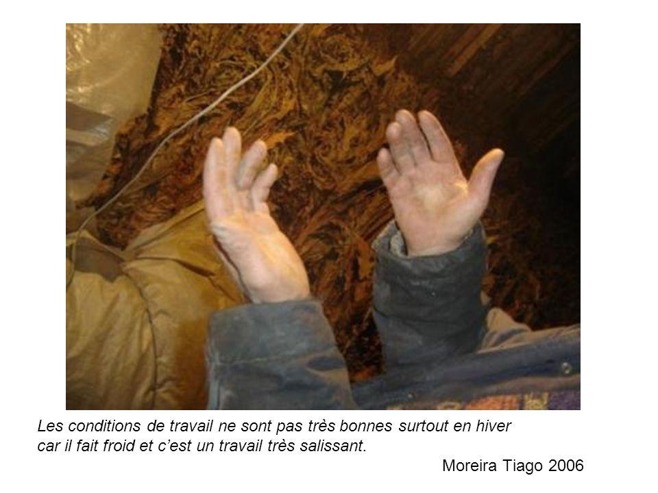 Les conditions de travail ne sont pas très bonnes surtout en hiver car il fait froid et cest un travail très salissant. Moreira Tiago 2006