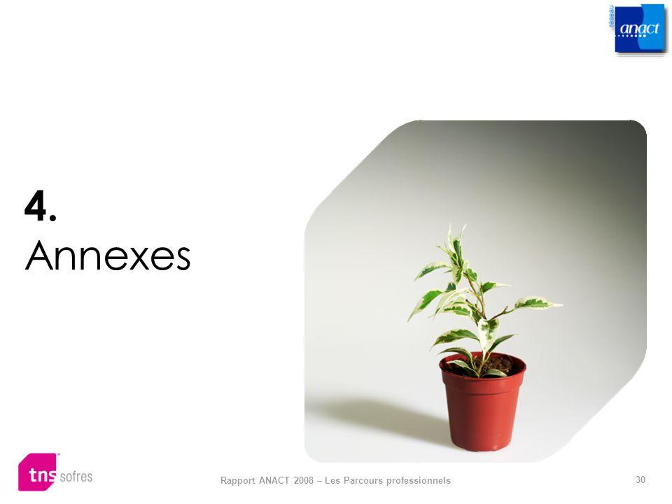30 Rapport ANACT 2008 – Les Parcours professionnels 4. Annexes