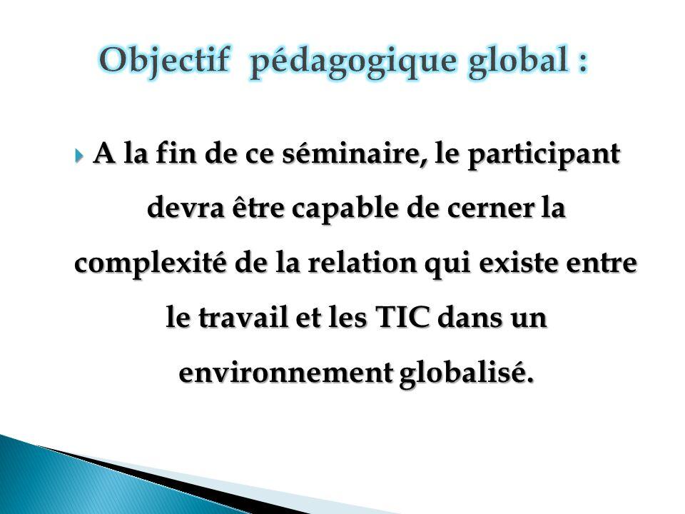 A la fin de ce séminaire, le participant devra être capable de cerner la complexité de la relation qui existe entre le travail et les TIC dans un environnement globalisé.