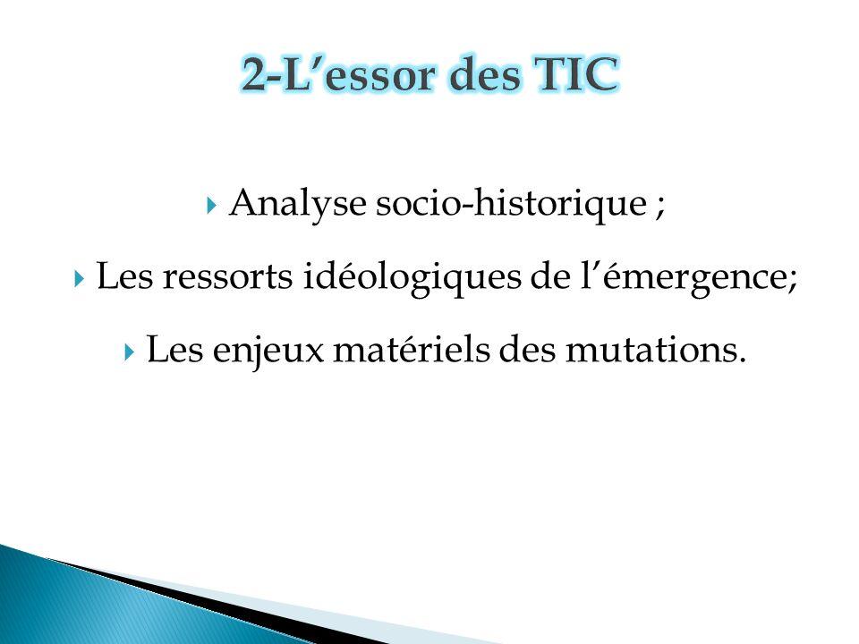 Analyse socio-historique ; Les ressorts idéologiques de lémergence; Les enjeux matériels des mutations.