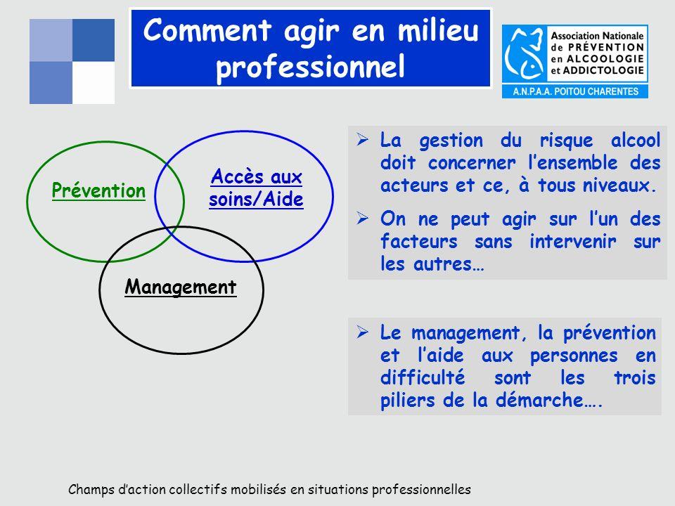 Comment agir en milieu professionnel Prévention Accès aux soins/Aide Management La gestion du risque alcool doit concerner lensemble des acteurs et ce, à tous niveaux.