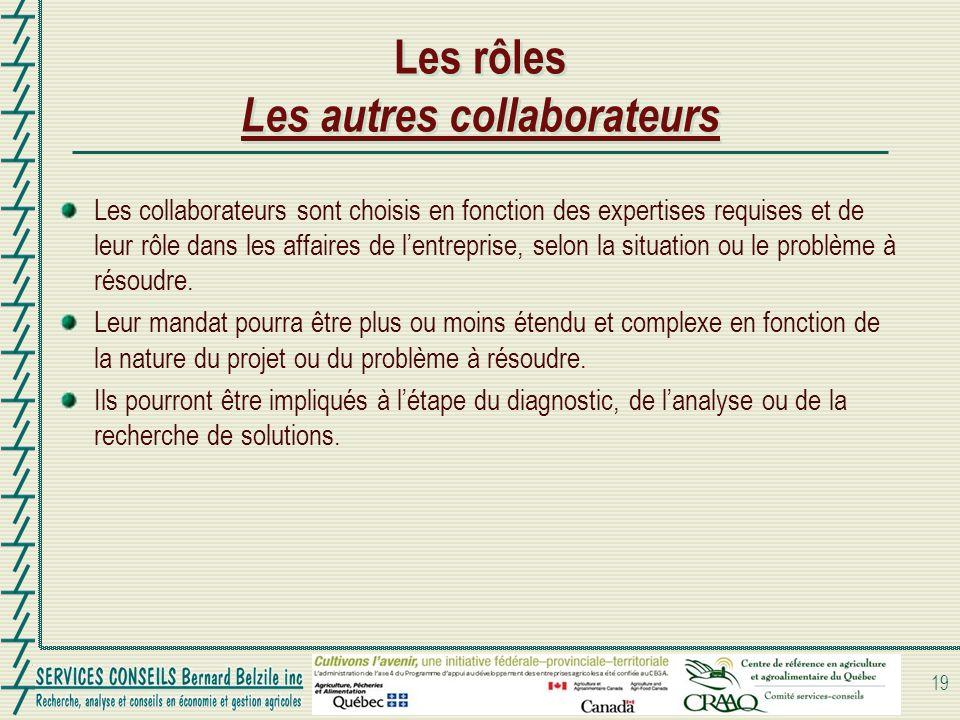 Les rôles Les autres collaborateurs Les collaborateurs sont choisis en fonction des expertises requises et de leur rôle dans les affaires de lentreprise, selon la situation ou le problème à résoudre.