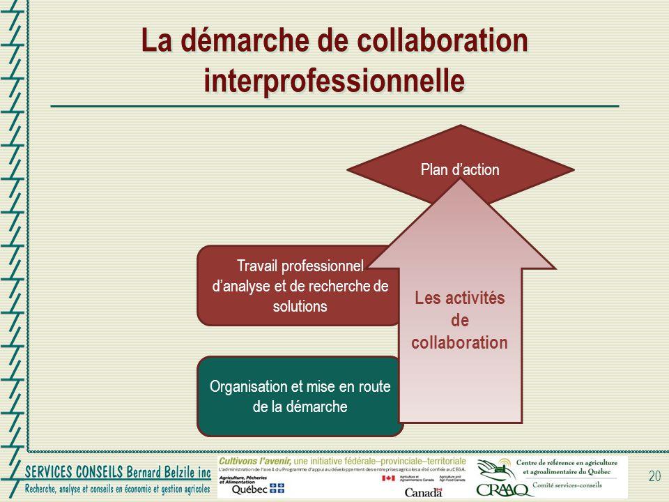 La démarche de collaboration interprofessionnelle 20 Organisation et mise en route de la démarche Travail professionnel danalyse et de recherche de so
