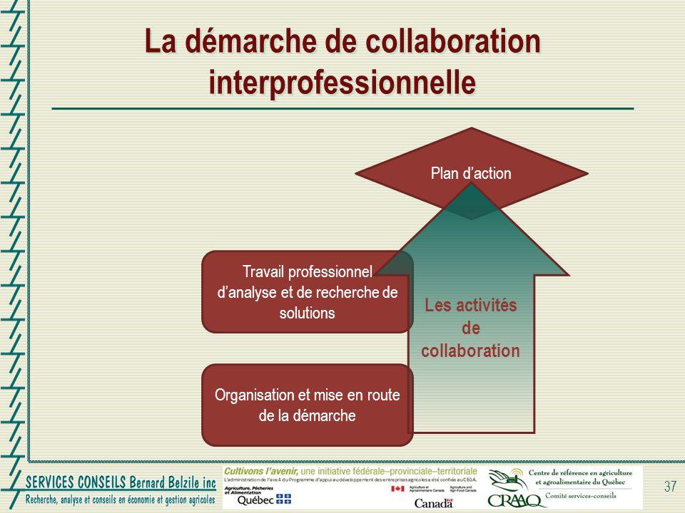 La démarche de collaboration interprofessionnelle 37 Organisation et mise en route de la démarche Travail professionnel danalyse et de recherche de solutions Plan daction Les activités de collaboration