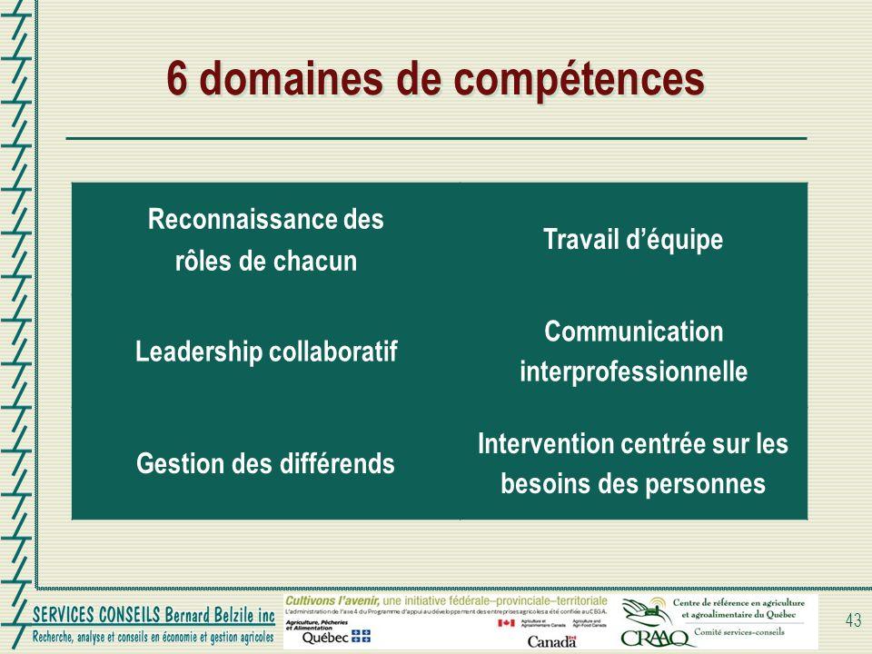 6 domaines de compétences Reconnaissance des rôles de chacun Travail déquipe Leadership collaboratif Communication interprofessionnelle Gestion des différends Intervention centrée sur les besoins des personnes 43