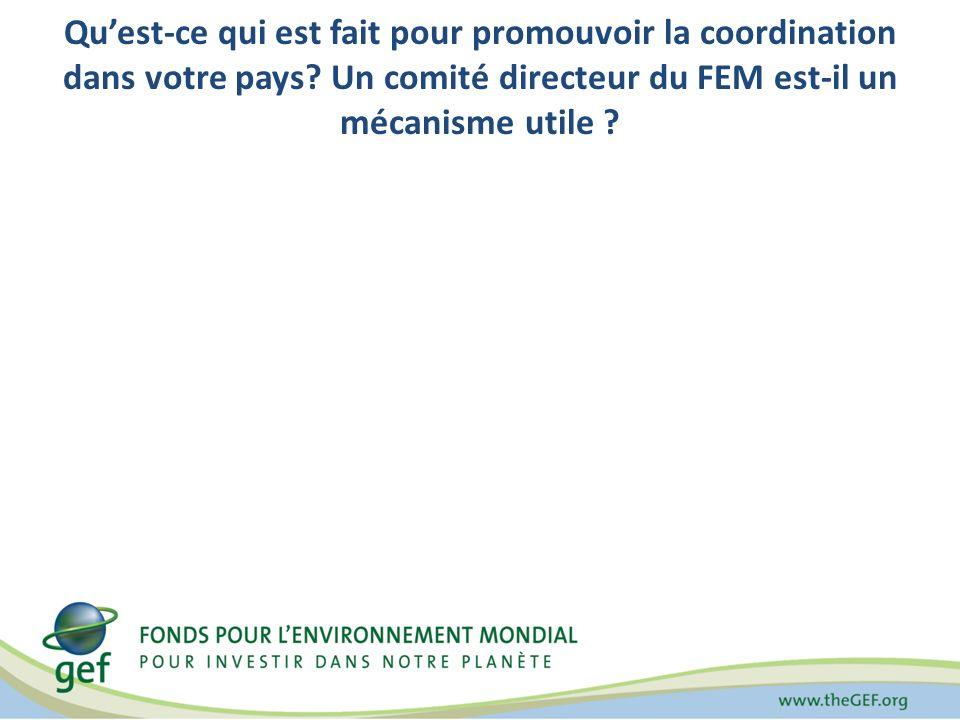 Quest-ce qui est fait pour promouvoir la coordination dans votre pays? Un comité directeur du FEM est-il un mécanisme utile ?