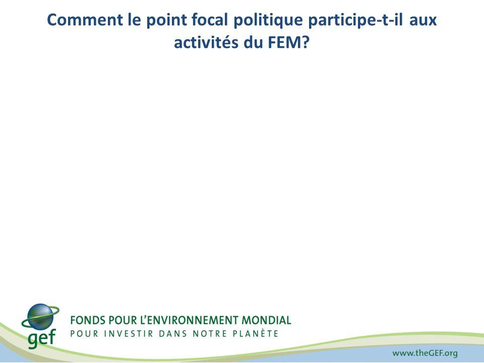 Directives pour les points focaux techniques Les responsabilités opérationnelles consistent à : Avaliser les projets avant que les Entités dexécution ne présentent la Fiche didentité du projet (FIP) au Secrétariat du FEM pour validation.