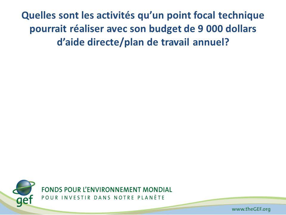 Quelles sont les activités quun point focal technique pourrait réaliser avec son budget de 9 000 dollars daide directe/plan de travail annuel?